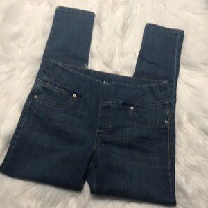 Style & Co Boyfriend Jeans NWT